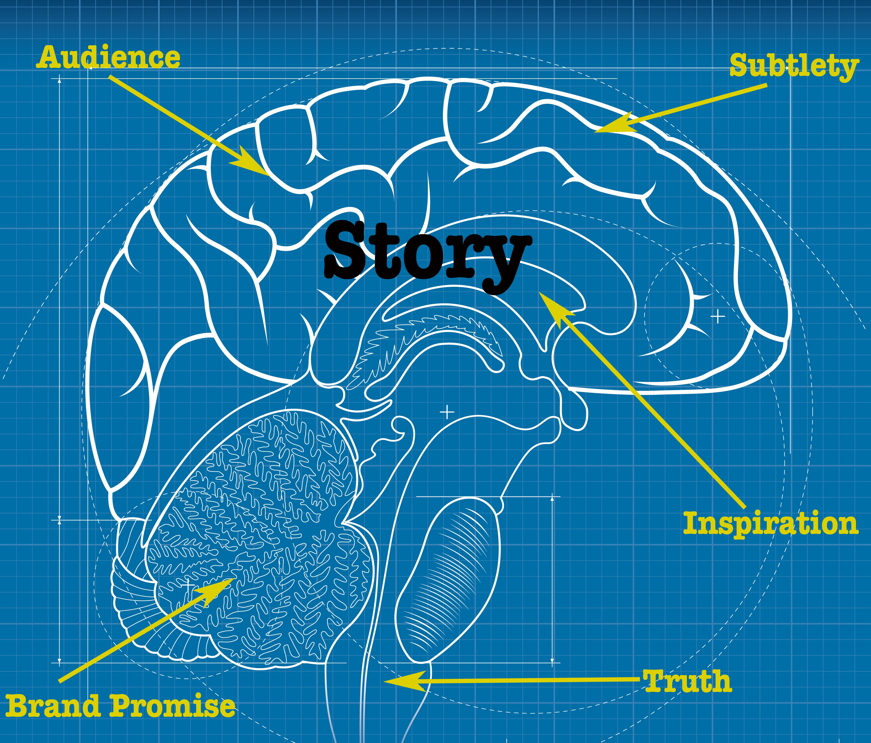 TypeA Anatomy of a Brand Story » TypeA